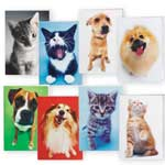 Dog And Cat Blank Note Card